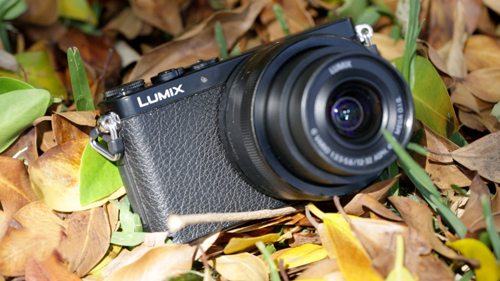 Panasonic DMC-GM1-1